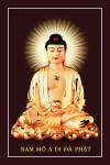 Phật ADIDA 004 (tranh gỗ đổ bóng)
