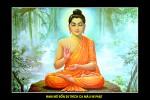 Phật Thích Ca 060 (ép laminater đổ bóng)