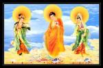 Phật Tam Thánh 198 (Tranh ép gỗ đổ bóng)