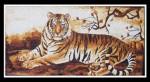 Tranh gạo Hổ rừng già