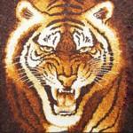 Tranh gạo Măt hổ II