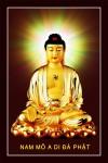 Phật ADIDA ( in dầu ép foam 913 )