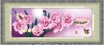 Hoa lan 5D135