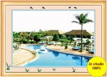 Hồ bơi mũi né-tranh theu chu thap-222070