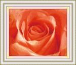 Tranh thêu chữ thập,hoa hồng- YH303