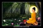Phật Thích Ca.005 (tranh ép gỗ đổ bóng)