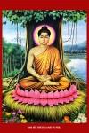 Phật thích ca ( in dầu ép foam 907 )